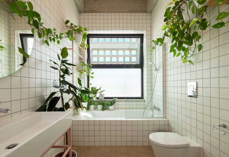 Bathroom with white grid tiles and lots of plants.