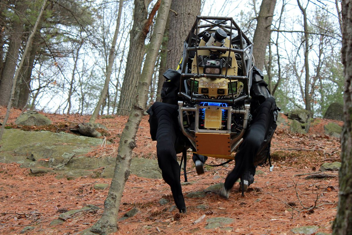 A quadrupedal robot made by Boston Dynamics considered for military use