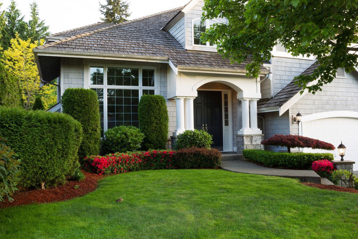Landscaping in the front of a home.
