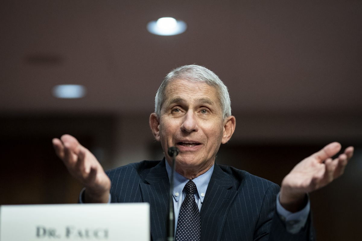 Dr. Anthony Fauci speaks during a Senate Health, Education, Labor and Pensions Committee hearing on Tuesday.
