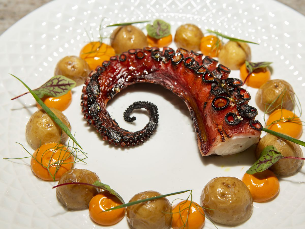 A round white plate with a grilled octopus tentacle