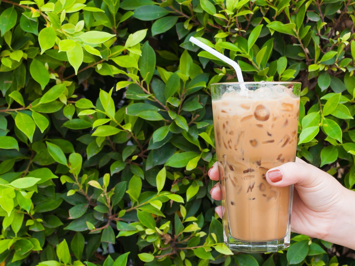 a hand holding an iced coffee in front of a leafy green bush