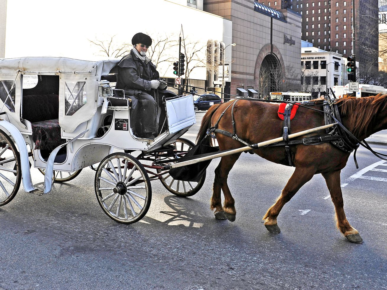"Carriage driver Rich Capalbo and his horse ""Fredo"" turn onto Chicago Ave. from Michigan Ave., on March 30, 2011. l Sun-Times Library"