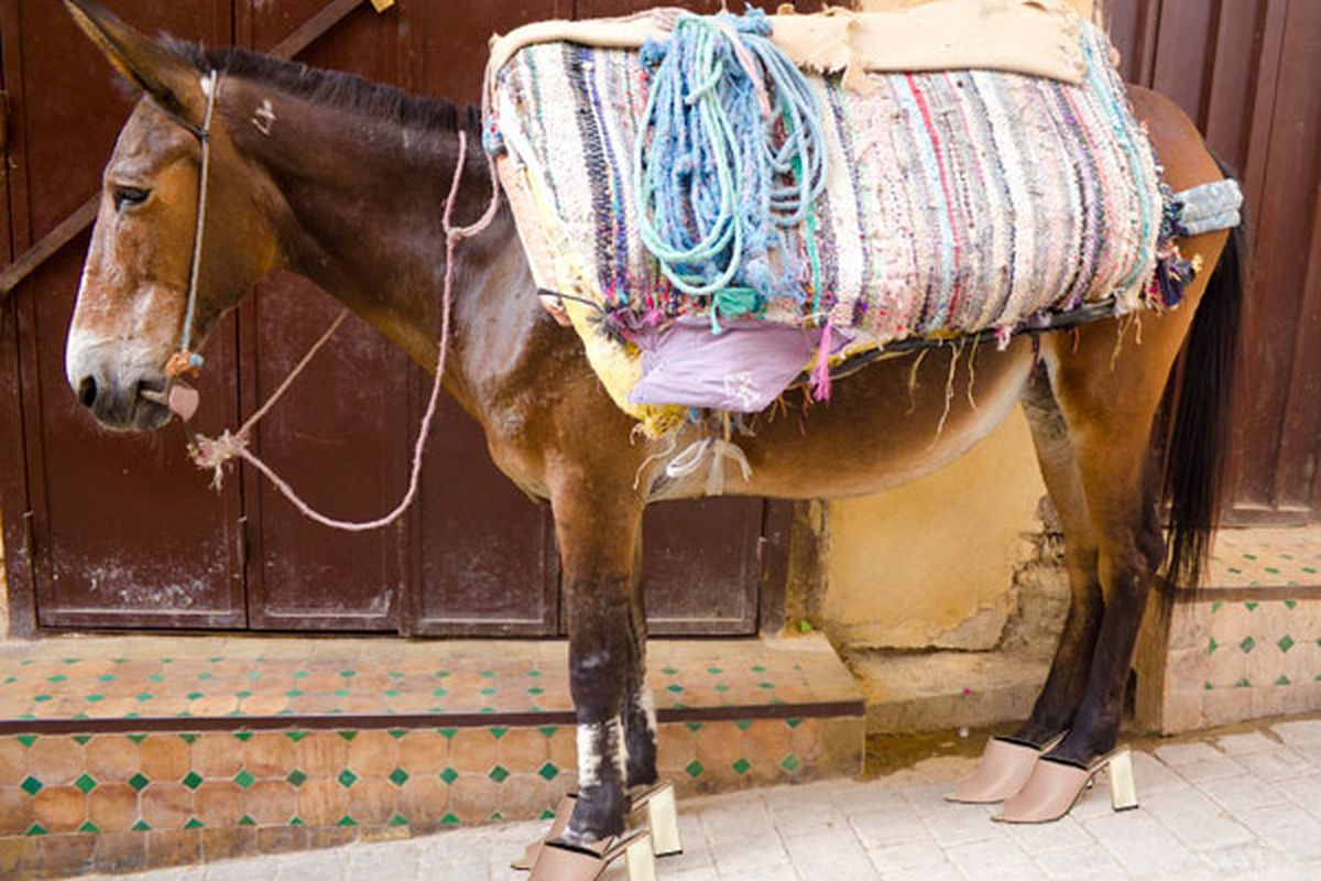 "Image via <a href=""http://www.cosmopolitan.com/celebrity/fashion/cute-slip-on-mule-shoes#slide-1"">Cosmopolitan</a>."