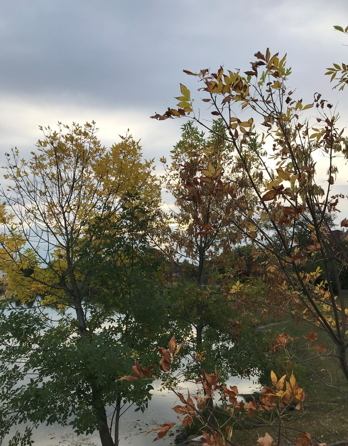 """Fall changes. Provided by Ken """"Husker"""" O'Malley"""