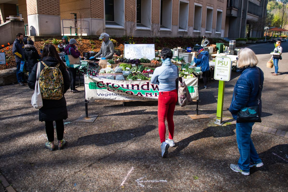 Three women stand six feet apart waiting by the Groundworks Organics sign at the Portland Farmer's Market, next to a display table with carrots, radishes, greens, and garlic scapes. Past the table, customers wearing gloves and rain jackets cluster around, picking out produce.