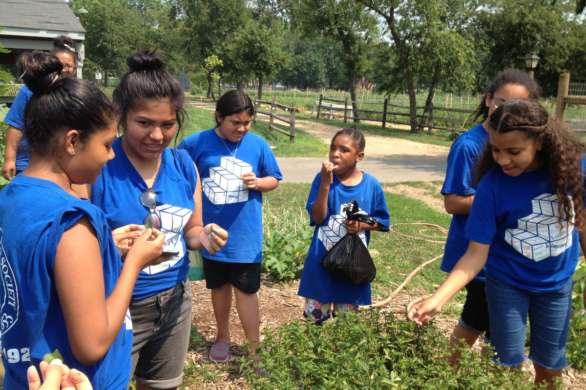 Summer camp at the community school at Mirabal Sisters Campus in Washington Heights includes a field trip to a local farm.