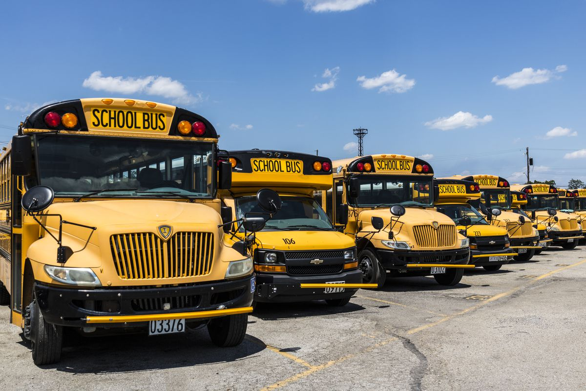 Image result for school buses