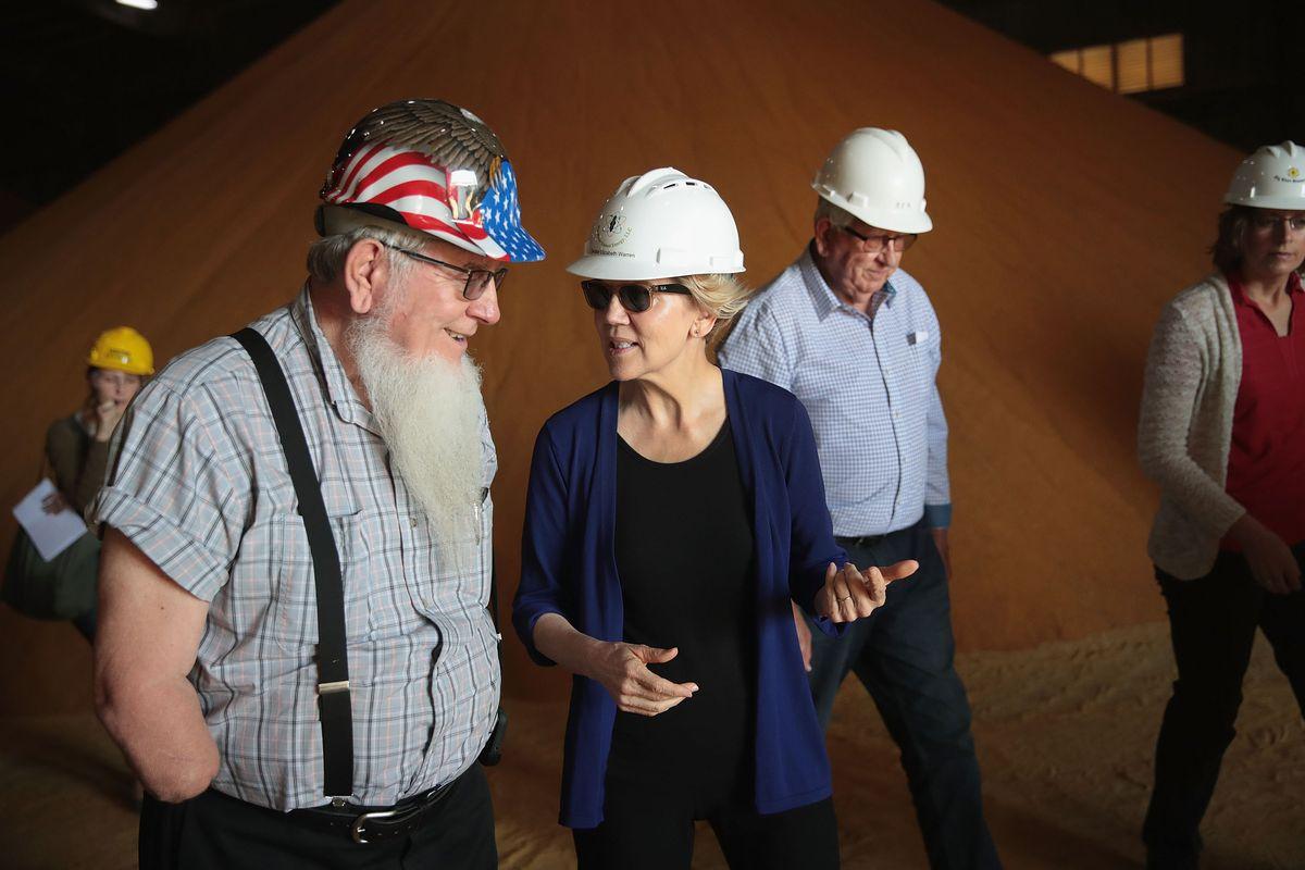 Democratic presidential candidate Senator Elizabeth Warren (D-MA) has tackled climate change in three key proposals.