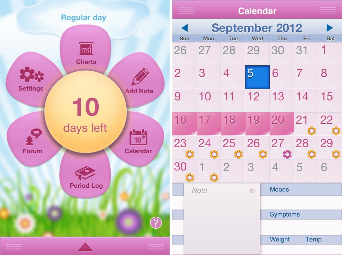Period Diary User Interface