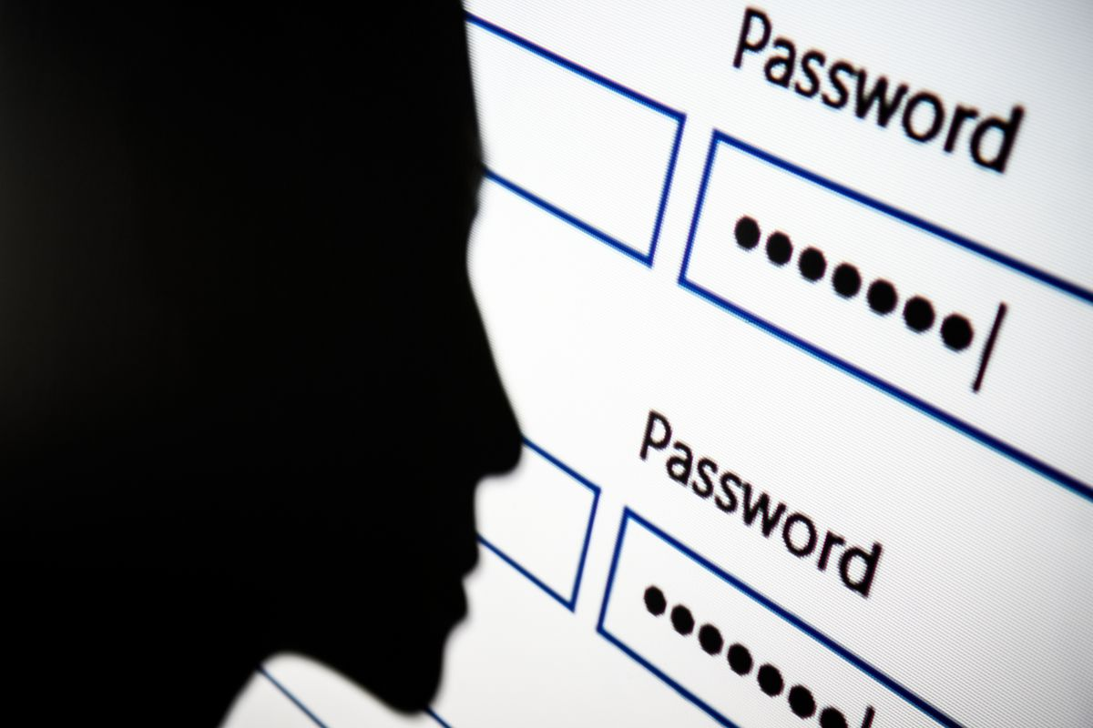 silhouette in front of password fields