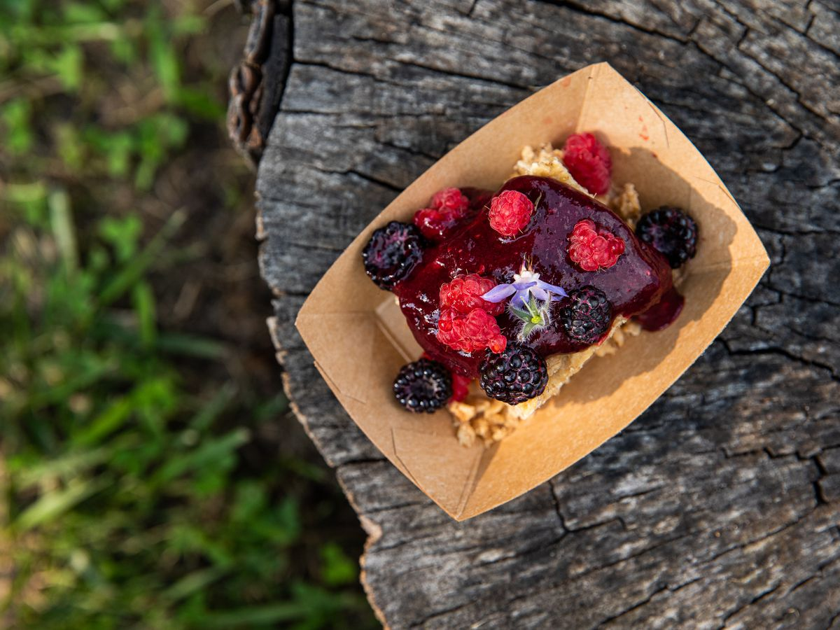 A slice of cake with whole berries and compote in a brown paper boat.