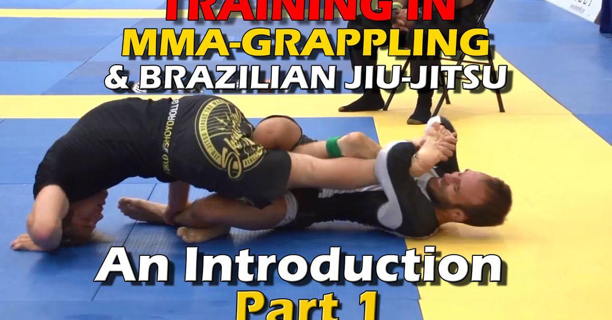 Tips for getting started in MMA-grappling & Brazilian Jiu Jitsu training - part 1