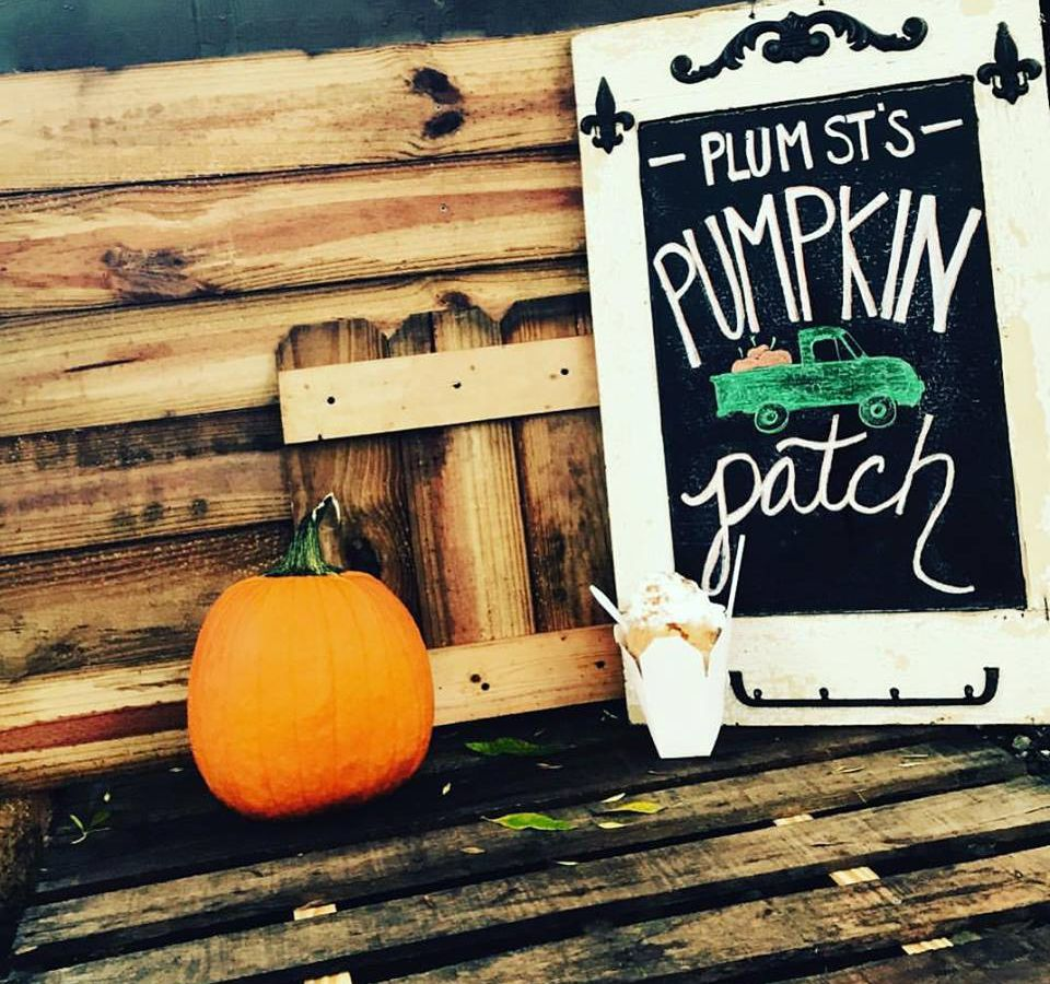 A wooden bench. There is an orange pumpkin on the bench. Next to the pumpkin is a sign that reads: Plus Street Pumpkin Patch.
