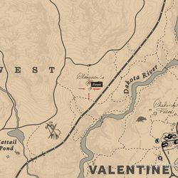 Red Dead Redemption 2 Guide To Camp Companion Item