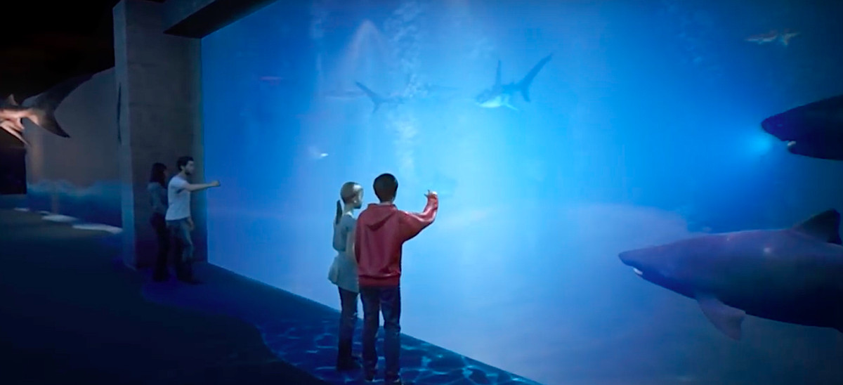 Huge windows and sharks in a new exhibit.