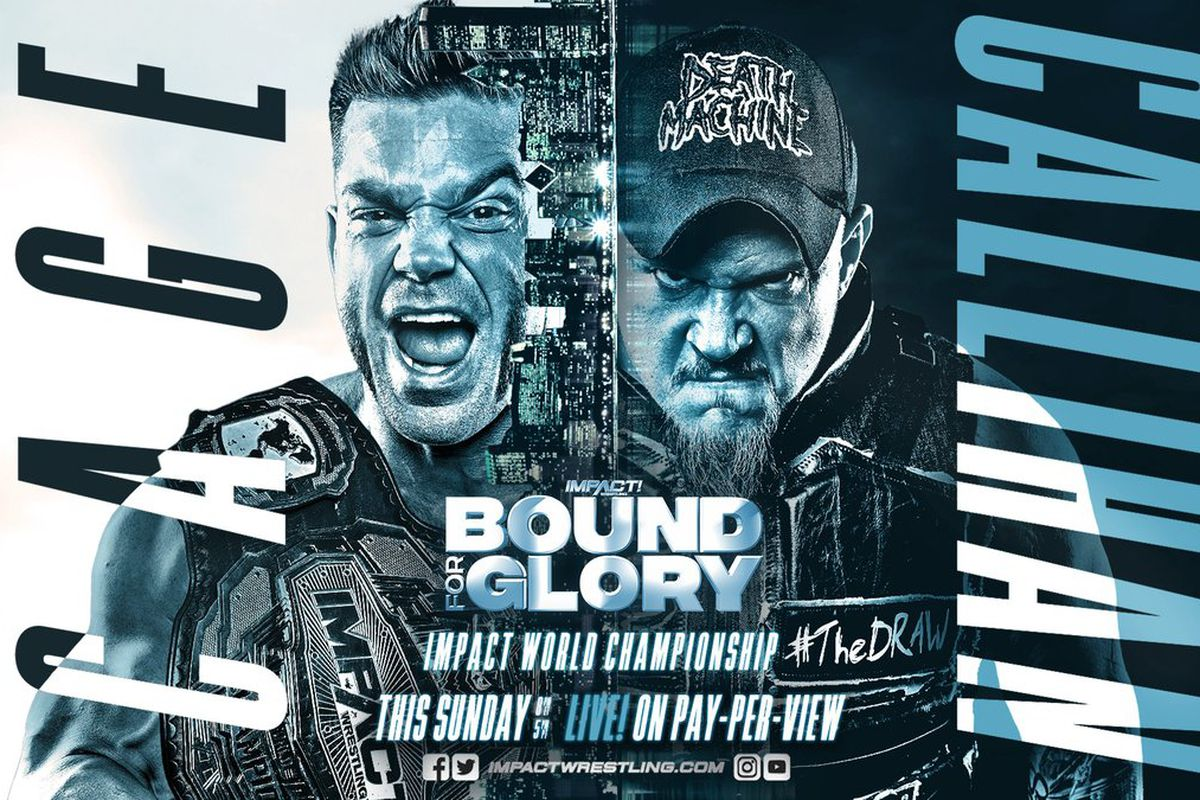 Image result for impact wrestling bound for glory 2019