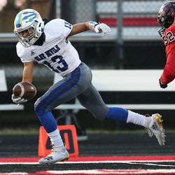 Warren's Marc Davila (13) scoops up a fumble, breaks a tackle, and tightropes down the sideline to score a touchdown against Bolingbrook.