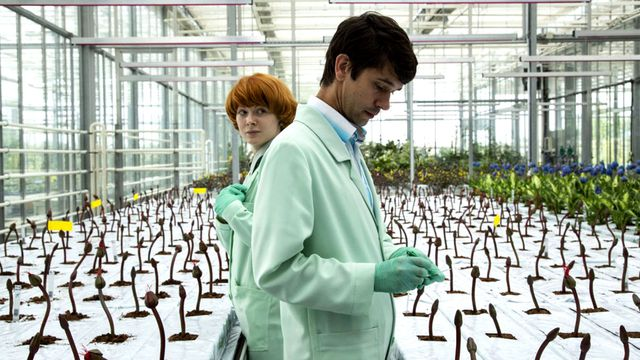 Emily Beecham and Ben Whishaw amongst a greenhouse full of Little Joe plants.