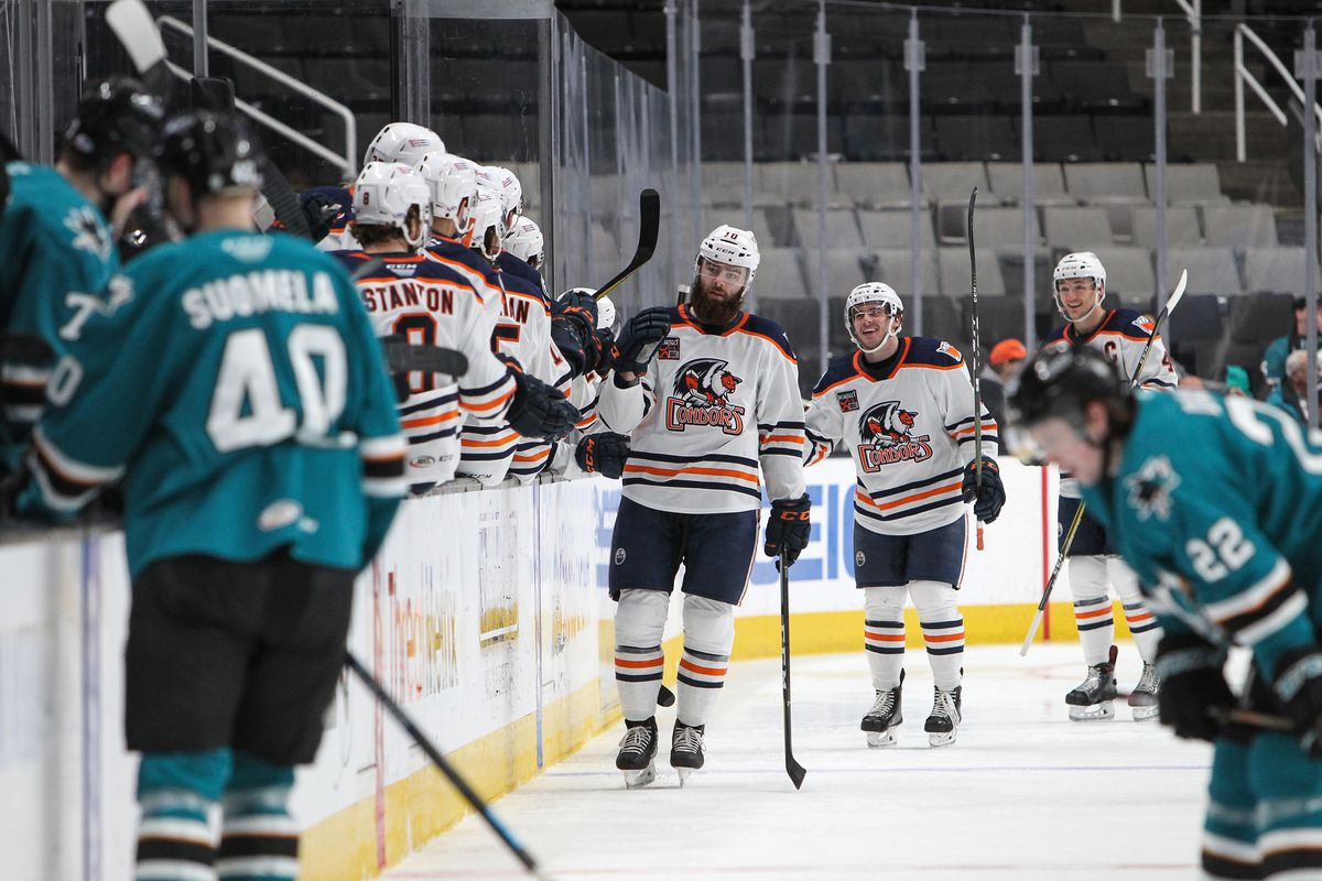 SAN JOSE, CA - MARCH 06: against the Bakersfield Condors at SAP Center on March 06, 2019 in San Jose, California