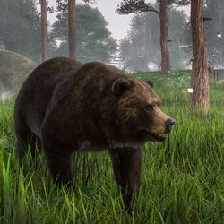 Grizzly bears in<em> Planet Zoo</em> for Windows PC.