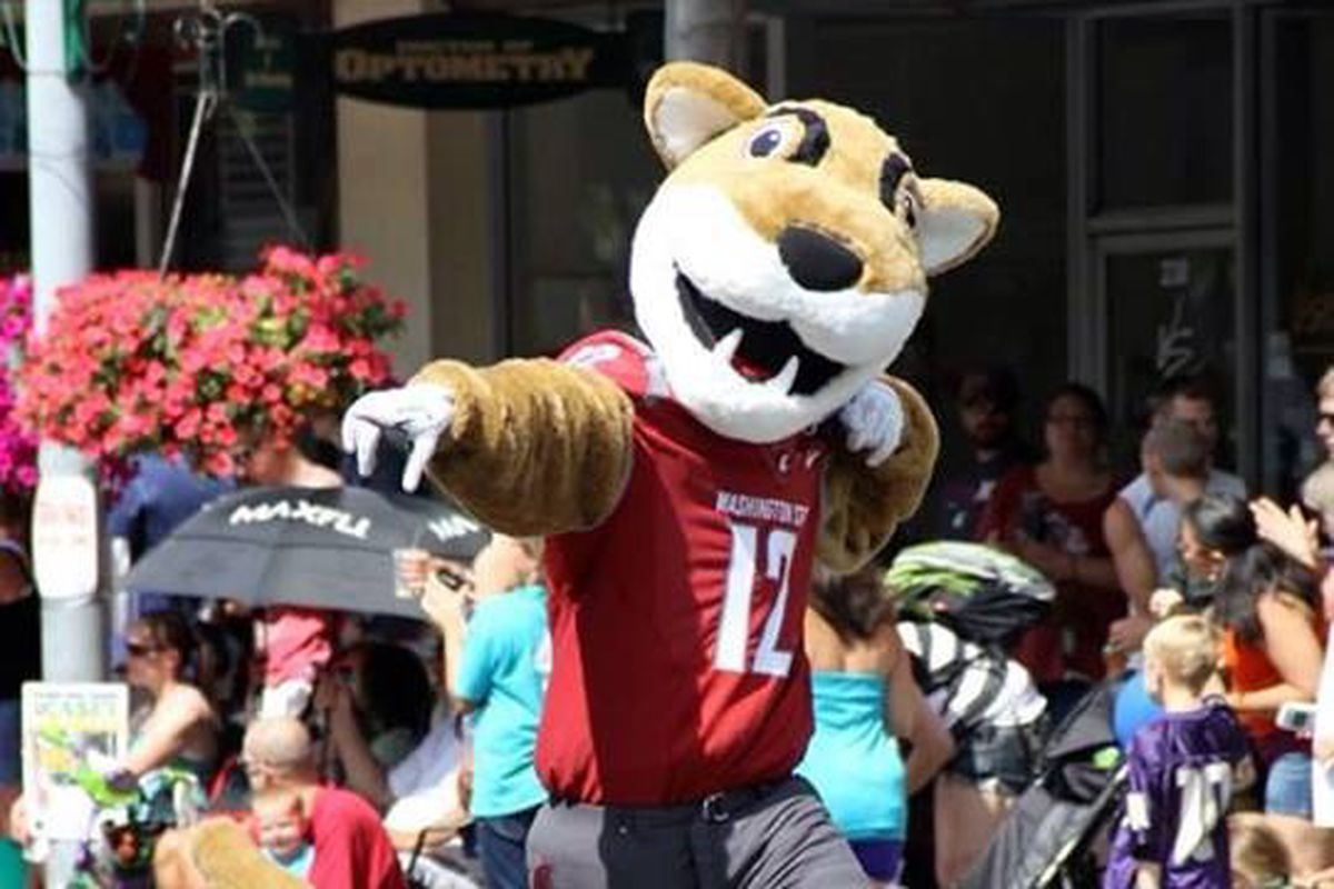 How did Butch T. Cougar end up like this? Photo from: WSU Athletics Facebook page