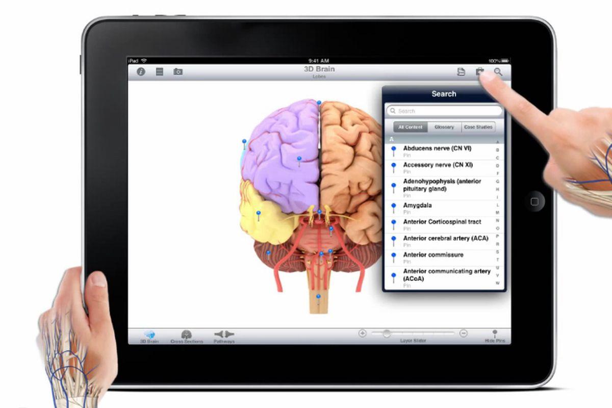 Pocket Brain for ios