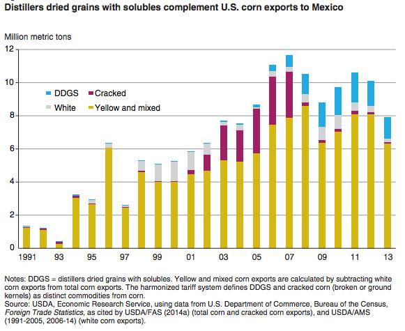 Corn exports Mexico