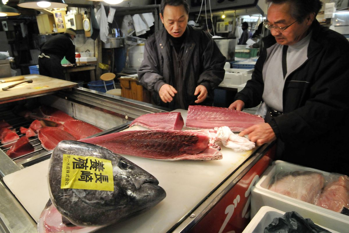 In a picture taken on February 19, 2010 fishmongers check bluefin tuna fillets at Tokyo's Tsukiji fish market.