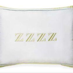 "<a href=""http://www.katespade.com/home-decor/bedding-sets/dragonfly-drive-bedding-4/291140YMT,default,pd.html?dwvar_291140YMT_color=332&start=11&cgid=bedding-bath"">June Lane ZZZ Pillow</a> $40"