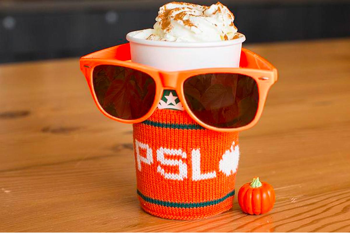 Pumpkin Spice Latte cozy