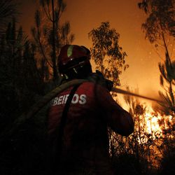 A firefighter works to douse the fire in Ribeira do Farrio, near Ourem, Portugal, Monday, Sept. 3, 2012. A Portuguese official says authorities have asked other European countries to send help as the country's firefighters struggle to contain forest blazes being fueled by high temperatures and strong winds.