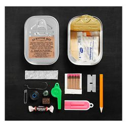 """For the manly-man:  Survival Kit in a Sardine Can, <a href=""""http://www.restorationhardware.com/catalog/product/product.jsp?productId=prod1214105&categoryId=cat1630018#"""">$10.99</a> at Restoration Hardware"""