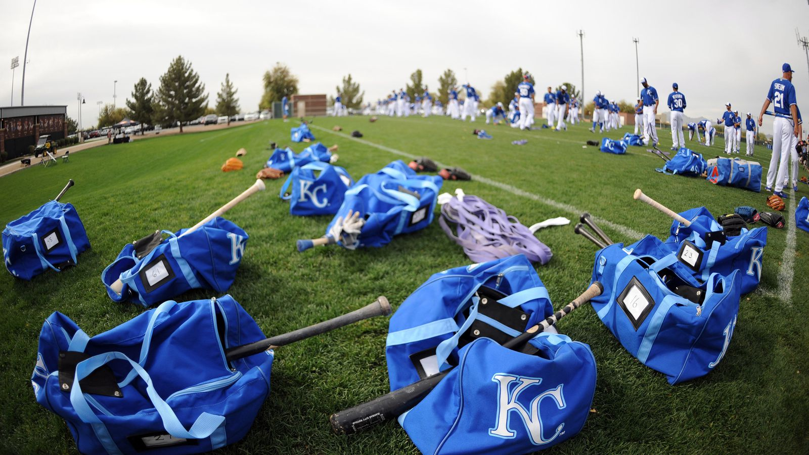 Kansas City Royals Spring Training Workout Schedule