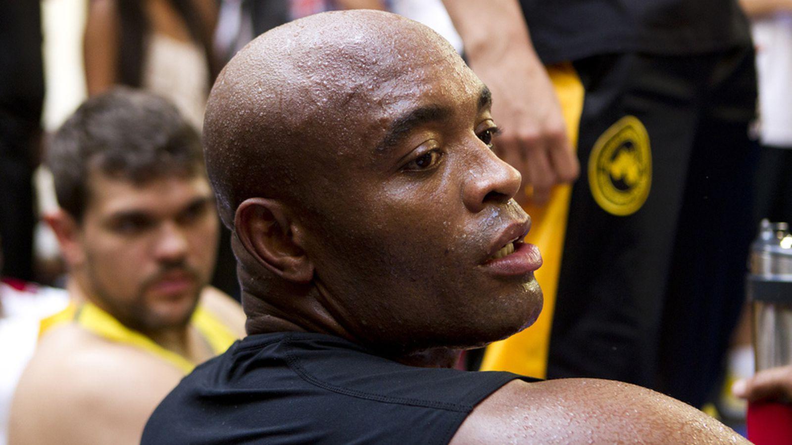Anderson Silva won't fight in 2014