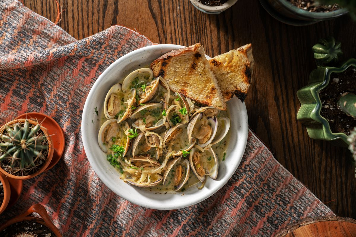 An overhead shot of steamed clams in a white bowl on a wood table with a brown and orange blanket under it.