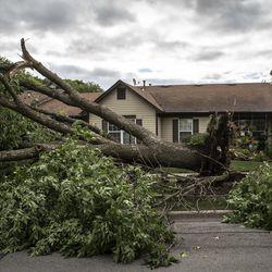 Storm damage in Naperville's Ranchview neighborhood Monday, June 21, 2021.