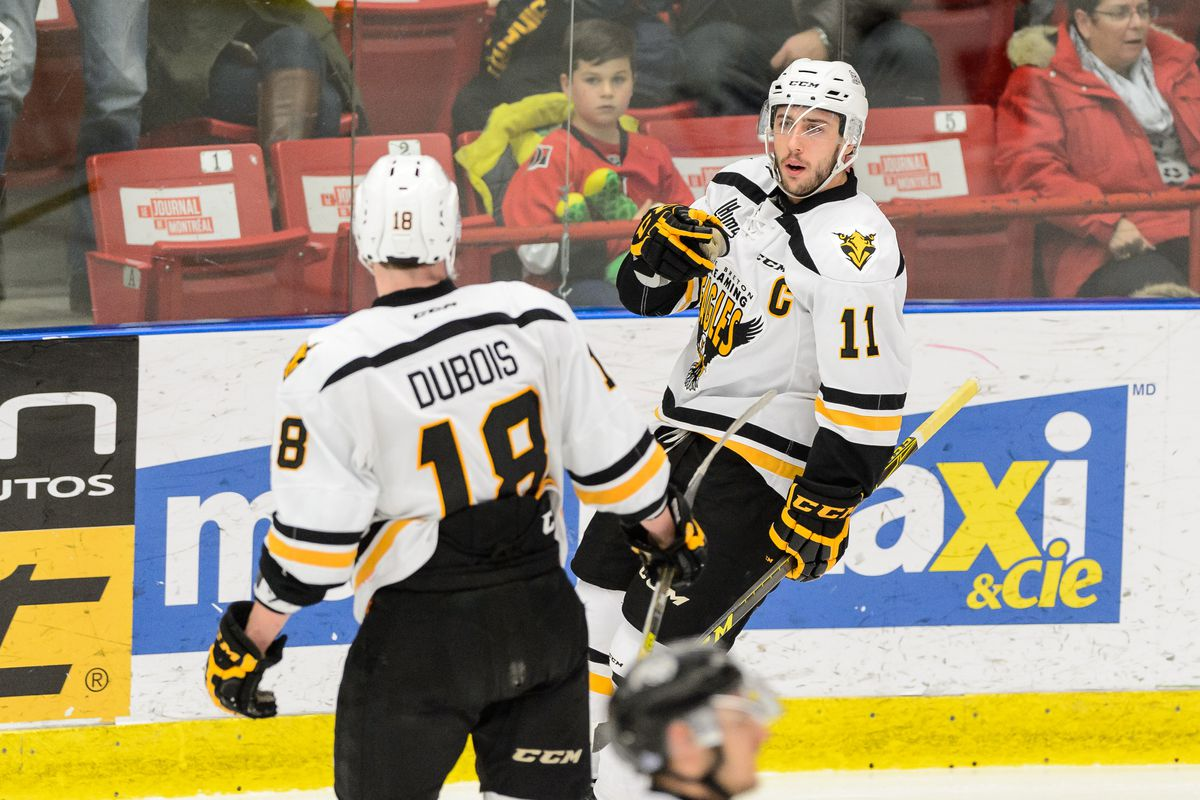save off a2ac6 e41ca 2016 NHL Draft Profiles: Is Pierre-Luc Dubois worth the ...