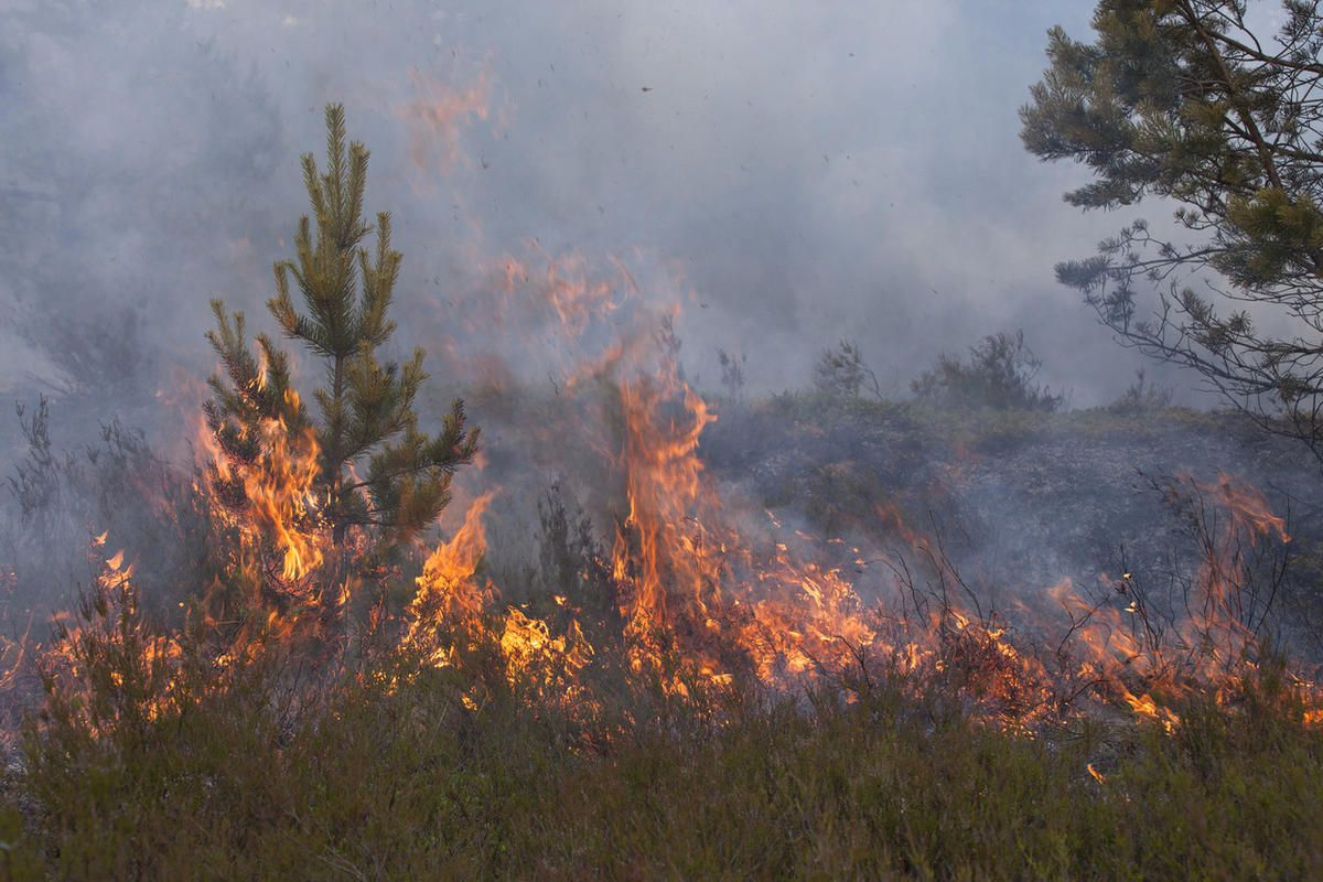 """Fires fanned by winds and aided by low humidity burned in several parts of Utah on Saturday. The National Weather Service's """"red flag"""" warnings for the Uinta Basin, San Rafael Swell and other areas suggest conditions are ripe for more blazes."""
