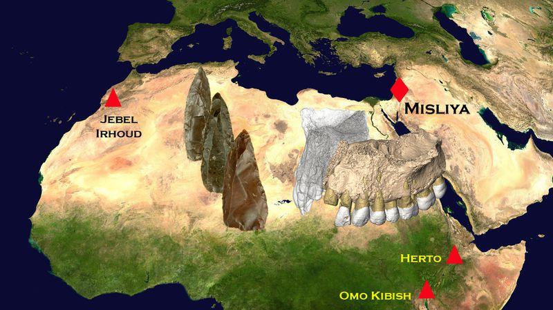 Un mapa de los sitios de Misliya en relación con otros descubrimientos clave.