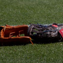 Gloves on the field -