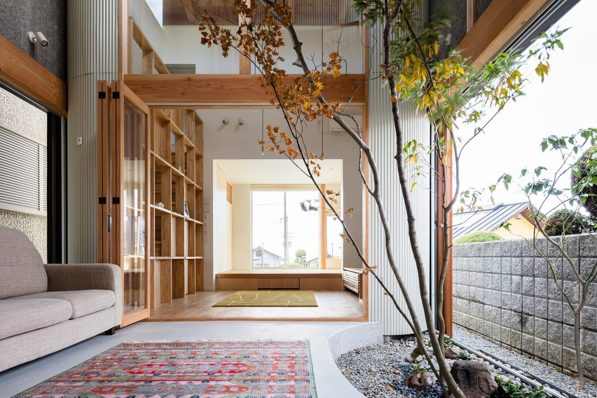 Tree growing inside of house with open living areas.