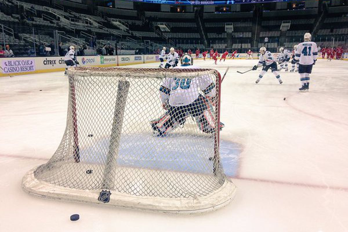 San Jose Barracuda goaltender Aaron Dell in warm-ups prior to Monday afternoon's game against the Charlotte Checkers at SAP Center. (Twitter.com/sjbarracuda)