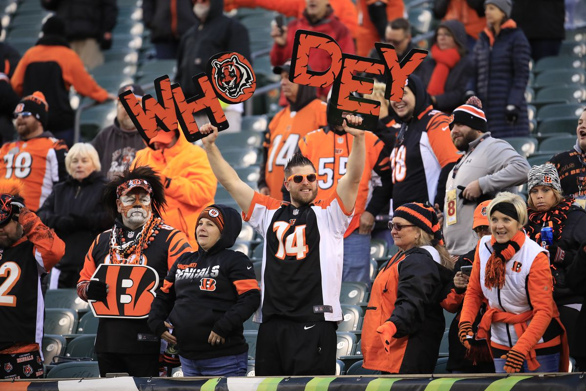Bengals fan finally leaves roof after losing streak is snapped