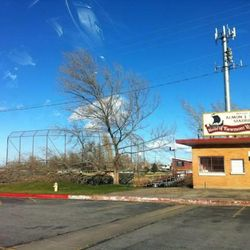 Strong winds caused damage to trees at Viewmont High School.