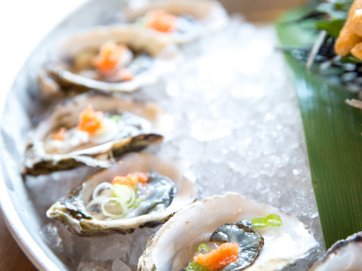 up close photo of oysters on ice