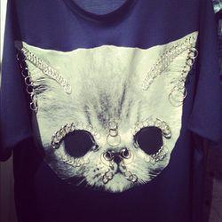 Bad kitty by Shaun Samson