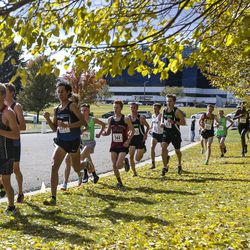 The lead runners pass by a group of trees during the 4A Boys State Cross-Country Championships at Sugar House Park in Salt Lake City on Wednesday, Oct. 23, 2019.