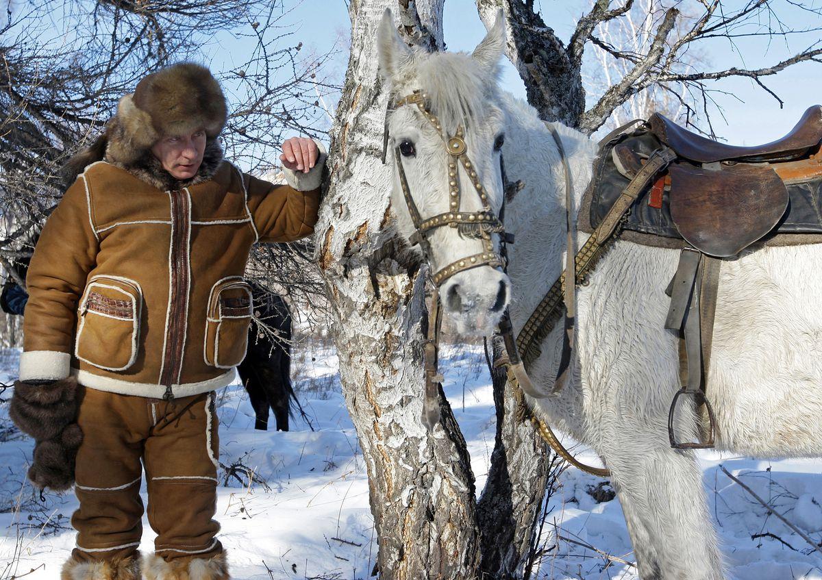 horse putin