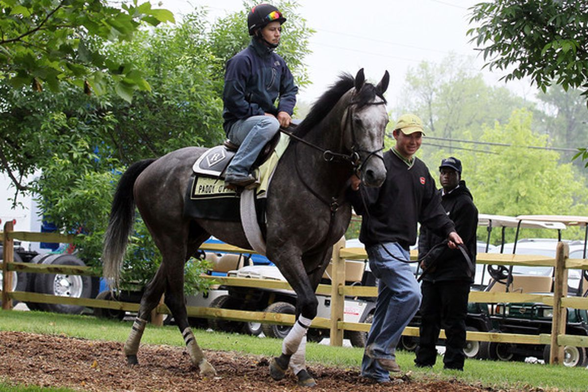 BALTIMORE - MAY 14:  Exercise rider Faustino Aguilar aboard Preakness Stakes hopeful Paddy O'Prado is led back to the barn after his morning workout at Pimlico Race Course on May 14, 2010 in Baltimore, Maryland.  (Photo by Jim McIsaac/Getty Images)